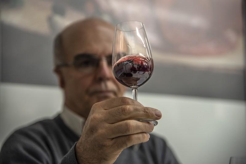 Critérios como limpidez, olfato e gosto são considerados na avaliação do vinho